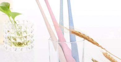 Cepillo de dientes bamboo