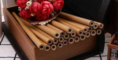 Popotes bamboo