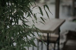 bambu versatil